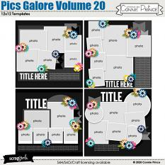 Pics Galore Volume 20 12x12 Templates by Connie Prince