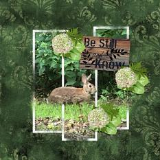 """""""Be Still and Know"""" digital layout features SSWAT: Rustic Renditions"""