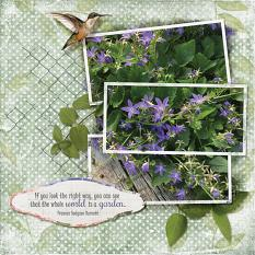 Summer Garden digital scrapbooking layout using Grunge Effect Textures 2