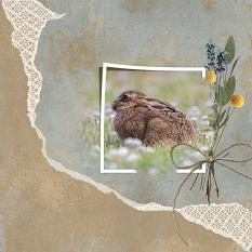 """Wild and Free"" digital scrapbooking layout using ScrapSimple Embellishment Templates: Paper Tears"