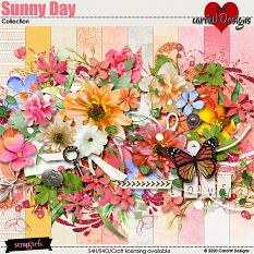 ScrapSimple Digital Layout Collection:sunny day