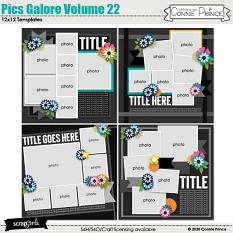 Pics Galore Volume 22 12x12 Templates by Connie Prince