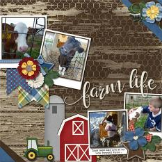 CT layout using Farm Life by Connie Prince