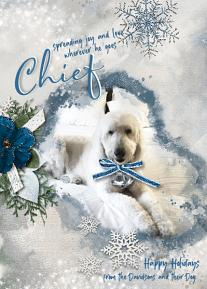 Chief digital scrapbooking layout featuring Call Of Winter Collections