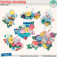 Spring cleaning - clusters pack 1 by HeartMade Scrapbook