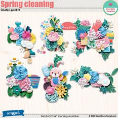 Spring cleaning - clusters pack 2 by HeartMade Scrapbook