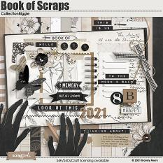Book of Scraps Collection Biggie by Brandy Murry