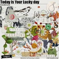 Today is Your Lucky Day Embellishments