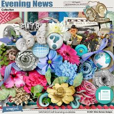 Evening News Collection by Silvia Romeo