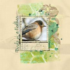 Birds of a Feather Layout by Emily Abramson