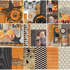 Punkin Collection Mini Close Up