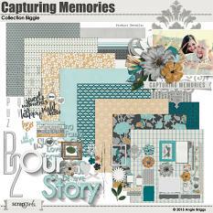 Capturing Memories Collection Biggie