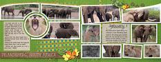 """Pilandsberg South Africa"" digital layout features SSDLAT: 8.5x22 Scrap It Monthly Two Series 1"