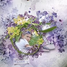 Lavender Wishes LO2