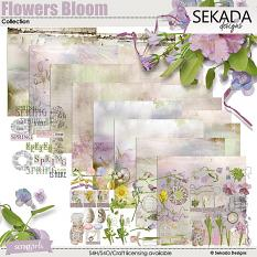 Flowers Bloom Collection