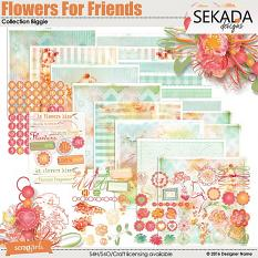 Flowers For Friends Collection Biggie