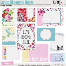 Love Blooms Here Pocket Life Cards by DRB Designs | ScrapGirls.com