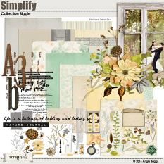 Simplify Collection Biggie