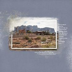 Goldfield Ghost Town by Barb Brookbank