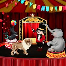 circus layout using Kid's Circus Collection by D's Design