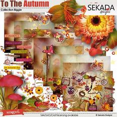 To The Autumn - Collection Biggie