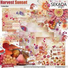 Harvest Sunset Collection Biggie