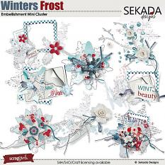 Winters Frost Embellishment Mini Clusters