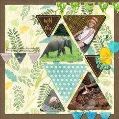 Layout using ScrapSimple Digital Layout Album Templates: 12x12 Geometry 2 Mini
