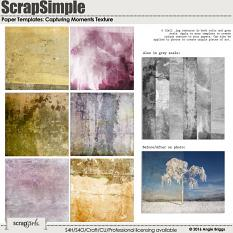 ScrapSimple Paper Templates: Capturing Moments - Texture