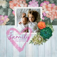 """Family"" digital scrapbook layout by Darryl Beers"