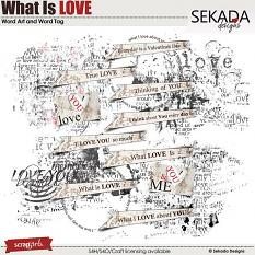 What Is Love Word Art and Word Tag