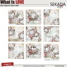 Easy Page Pro Album: What Is Love Mini