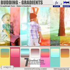 ScrapSimple Tools - Styles: Budding Gradients by AFT designs - Amanda Fraijo-Tobin @ScrapGirls.com