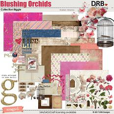 Blushing Orchids Collection Biggie by DRB Designs | ScrapGirls.com