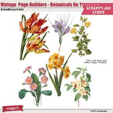 Vintage Page Builders - Botanicals No 1 by Jan Ransley
