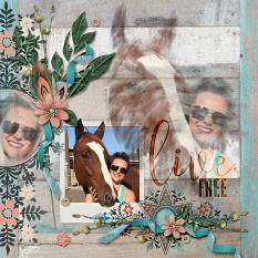 Digital scrapbooking layout by Amy Flanagan