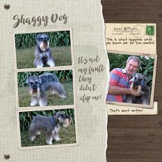 Shaggy Dog by Susie Roberts