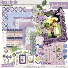 Hyacinth Collection Biggie