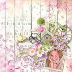 layout using spring spirit value pack by d's design