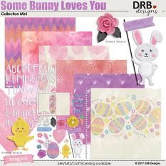 Some Bunny Loves You Collection Mini by DRB Designs | ScrapGirls.com
