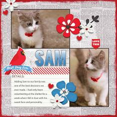 """Sam"" digital scrapbook layout by Darryl Beers"