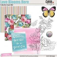Love Blooms Here Collection Super Mini by DRB Designs | ScrapgGirls.com