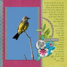 Layout by Penny using Layout by Bekki using Flower Frenzy 08 & Project Keepsake: June Collection Biggie