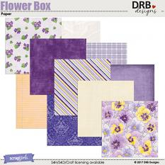 Flower Box Paper by DRB Design | ScrapGirls.com