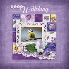 """Bird Watching"" digital scrapbook layout by Darryl Beers"