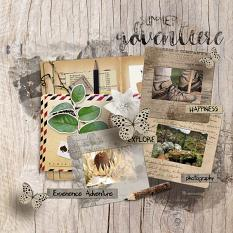 layout using Traveler's Notebook Embellishment Cluster Pack 3 by Florju designs