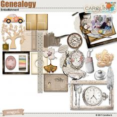 Genealogy Collection Embellishments by Caroline B.