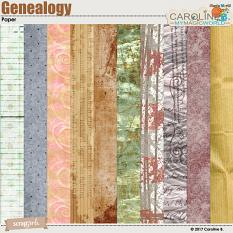 Genealogy Collection Papers by Caroline B.