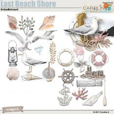 Last Beach Shore Embellishment by Caroline B.