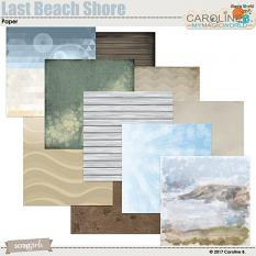 Last Beach Shore Paper by Caroline B.